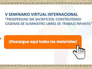Presentations and regional experiences developed during the V International Virtual Seminar